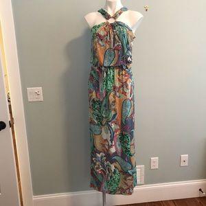 DB maxi dress